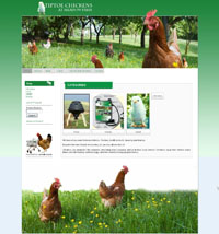 Web Design New Forest Tiptoe Chickens joomla virtuemart web site